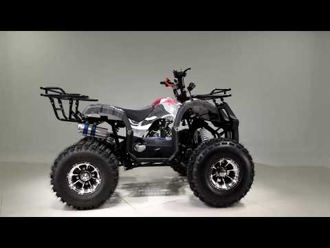 2019 Taotao USA TFORCE 120 in Gresham, Oregon - Video 1