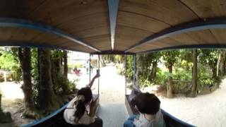 VR動画で沖縄 ツアー『フクギ並木の水牛車を360度視点で体験』4K 360°カメラの動画