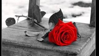 Lloran Las Rosas   ( Cristian Castro )