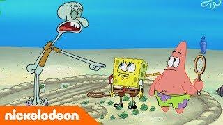 تحميل اغاني SpongeBob   Nickelodeon Arabia   سبونج بوب   حب الجيران MP3