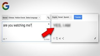 11 Things to Never Type into Google Translate