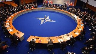 Пресс-конференция: «Зачем Порошенко референдум о вступлении Украины в НАТО?»