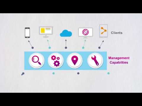 AAPM, Agentless Application Performance Management Software Technology
