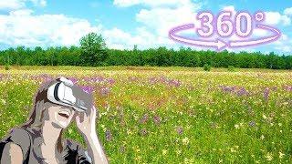 Панорамное Видео 360 VR 4K для очков виртуальной реальности. Поле...Русское по-оле...