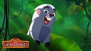 Zuka Zama Music Video | The Lion Guard: Return of the Roar | Disney Junior