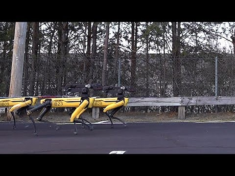 A Pack of Robot Dogs Work Together to Pull a Truck