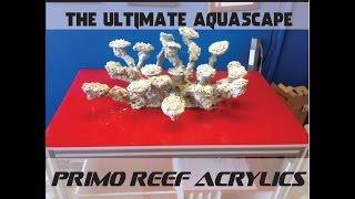 The ULTIMATE Aquascape
