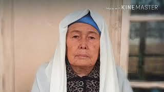 Shavkat Mirziyoyevga  5 yoshli qizchaning o'limi bo'yicha murojat