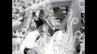 """Video thumbnail of """"Björk - Hidden Place"""""""