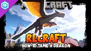 RL Craft How To Tame A Dragon