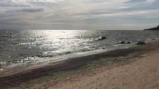 Красотка одна предотвратила экологическую катастрофу. Море на #омикс