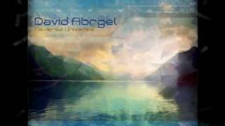 David Abrgel  - Reverse Universe
