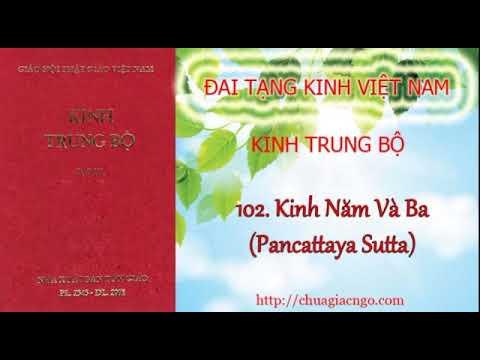 Kinh Trung Bộ - 102. Kinh Năm và Ba