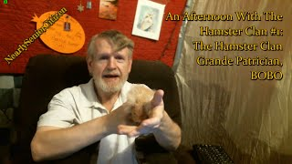AN AFTERNOON WITH THE HAMSTER CLAN #! : LE GRANDE PATRICIAN, BOBO