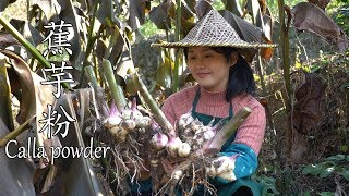 Jiao Yufen, a good ingredient of natural jelly, have you eaten it?