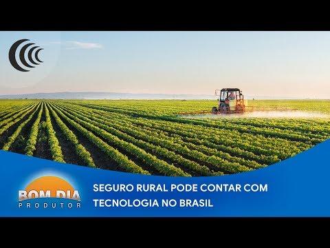 Seguro rural pode contar com tecnologia no Brasil