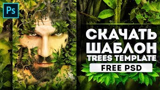 Скачать шаблон PSD. Trees photo template. Photoshop tutoria