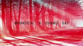 Whimsical - A Strange Day (The Cure Cover)