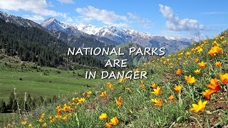NATIONAL PARKS ARE IN DANGER