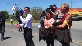 Dozens of animal welfare activists arrested after large protest at Petaluma chicken farm