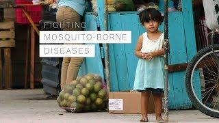 Fighting Mosquito-borne Diseases