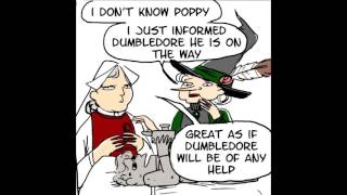 Dumbledore is the smartest wizard in the world