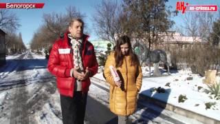 Зимовка в парке львов Тайган финальная версия