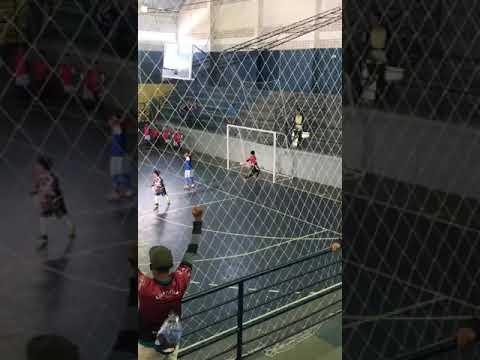 Campeonato brasileiro de futsal. Gol da vitória