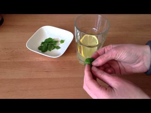 Behandlung von Husten Volksmedizin zur Behandlung von Diabetes mellitus