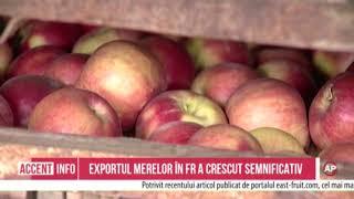 Exportul merelor în FR a crescut semnificativ