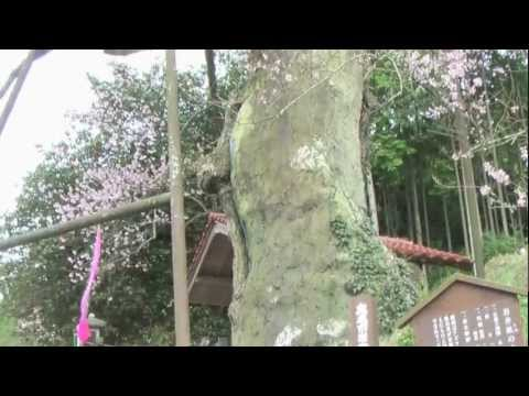 Shioyakita Elementary School