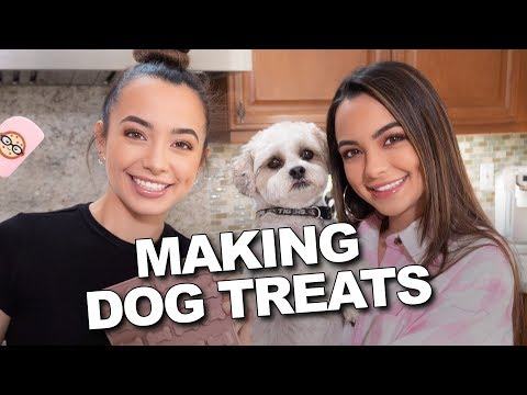 Making Dog Treats - Merrell Twins Live