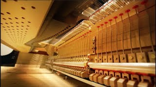 The Fascinating World Inside of a Piano