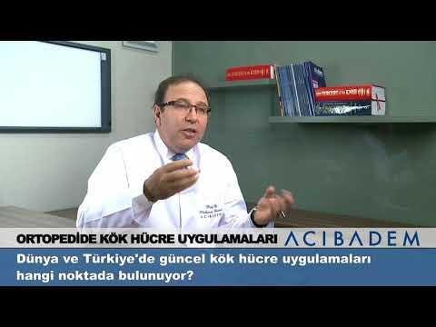 Dünya ve Türkiye'de Güncel Kök Hücre Uygulamaları Hangi Noktada Bulunuyor?