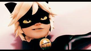 Chat noir-Gentleman MV