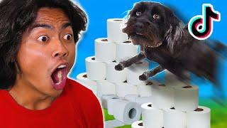 INSANE TIKTOK DOG HACKS!