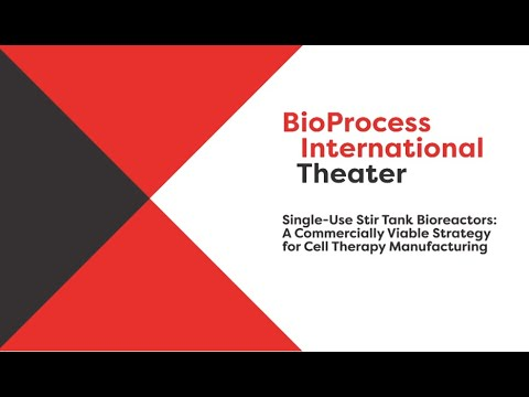 BIOne SUB: A Commercially Viable Strategy for Cell Therapy Manufacturing