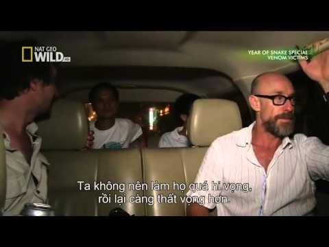 Hành trình đi tìm rắn độc ở Việt Nam, Việt Nam Trong Máy Quay Của Người Nước Ngoài Thật Đẹp