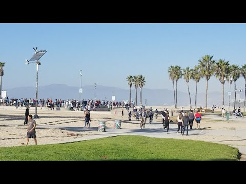 Nice Day At Venice Beach