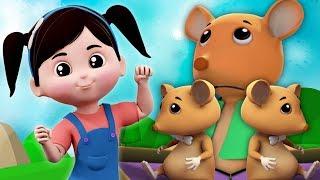 Ba con chuột mù | vần điệu cho trẻ em | bài thơ trẻ em | Nursery Rhymes | Three Blind Mice