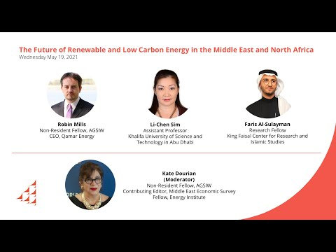 The Future of Renewable and Low Carbon Energy in the Middle East and North Africa