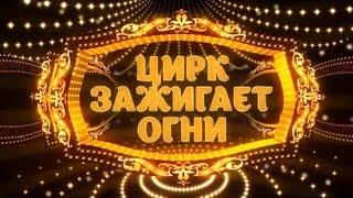"""""""Цирк зажигает огни"""" / Тамерлан Нугзаров (2016)"""