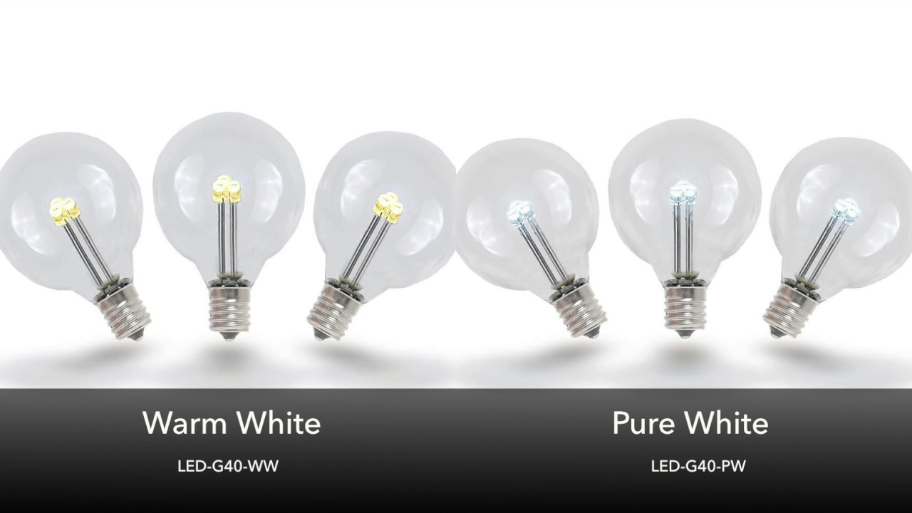 Picture of Warm White - G40 Glass LED Replacement Bulbs - 25 Pack