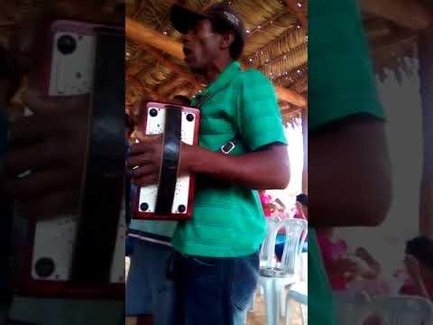 Folia de Reis , Comunidade dos Ramos , em Angelândia , MG .