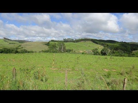 Fazenda a venda em Andradas-MG  99 hectares