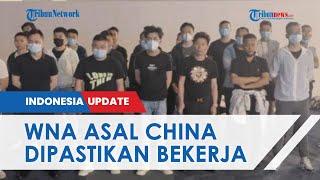 Ratusan WNA China Masuk ke Indonesia Lewat Bandara Soetta, Dirjen Imigrasi Pastikan untuk Bekerja