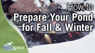 Aquascape's How To Prepare Your Pond for Fall and Winter