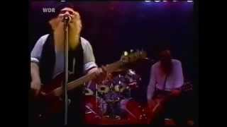 ZZ Top 'Live'- Dust My Broom