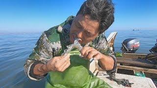 阿阳摸黑抢到捕鱼宝地,捕上来的海鲜又大又肥,不蘸芥末直接生吃