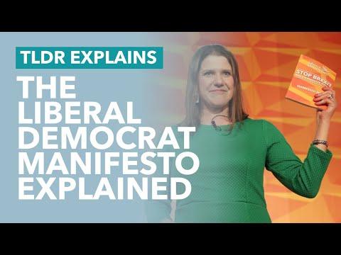 The Liberal Democrat Manifesto Explained - TLDR News